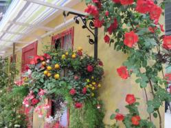 明るい南欧の雰囲気の庭