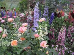 印象派の庭③