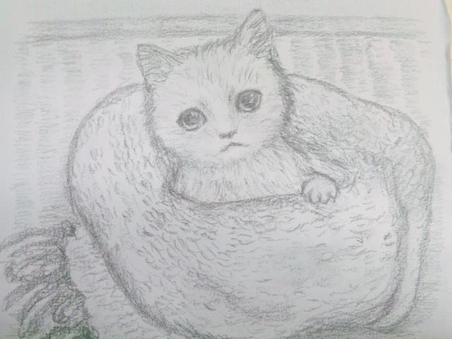 猫マフラー1