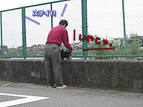 CIMG3271.jpg