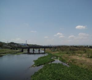 20110424-4.jpg