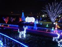 伊勢崎市のクリスマスイルミネーション