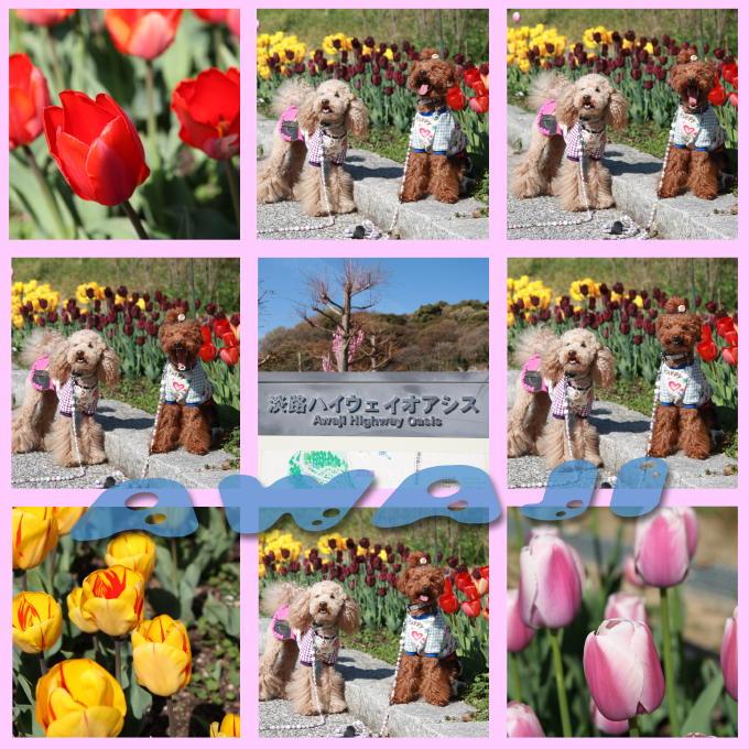 3_20110501185532.jpg