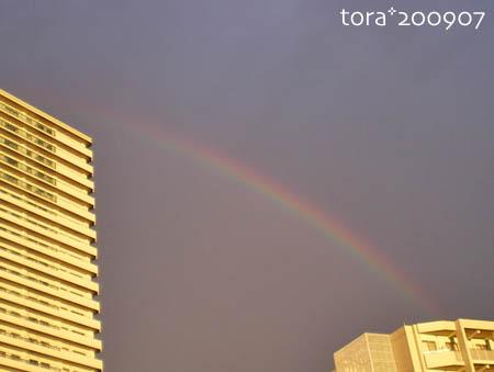 tora09-07-147.jpg