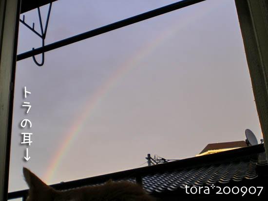 tora09-07-149.jpg