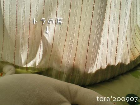 tora09-07-150s.jpg