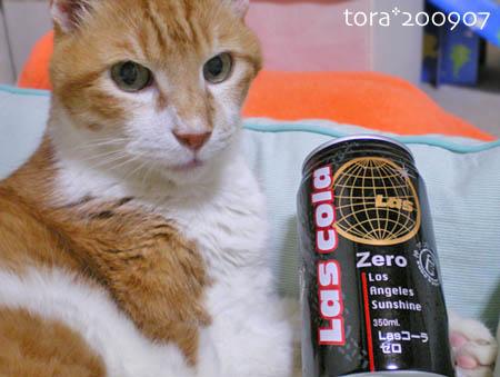 tora09-07-164s.jpg