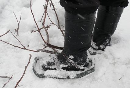 冬のアイテム
