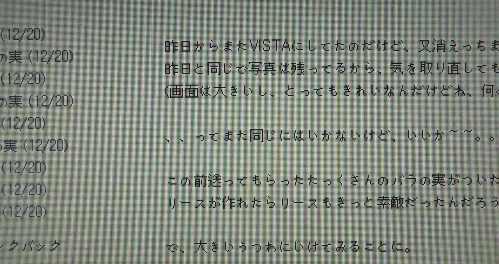 PC217521.jpg