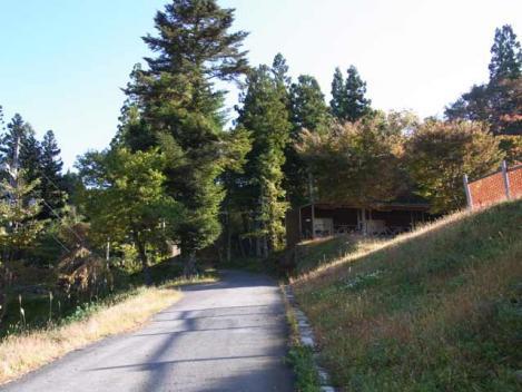 111029-motaieboshi-03.jpg
