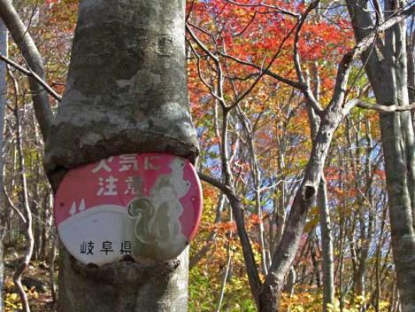 111029-motaieboshi-14.jpg