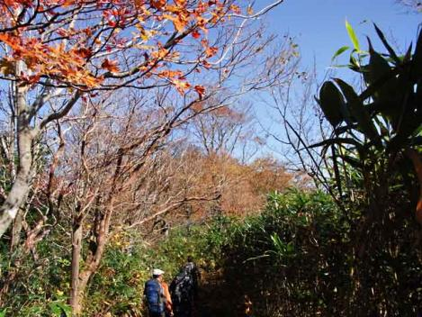 111029-motaieboshi-23.jpg