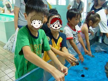 水族館2009_3