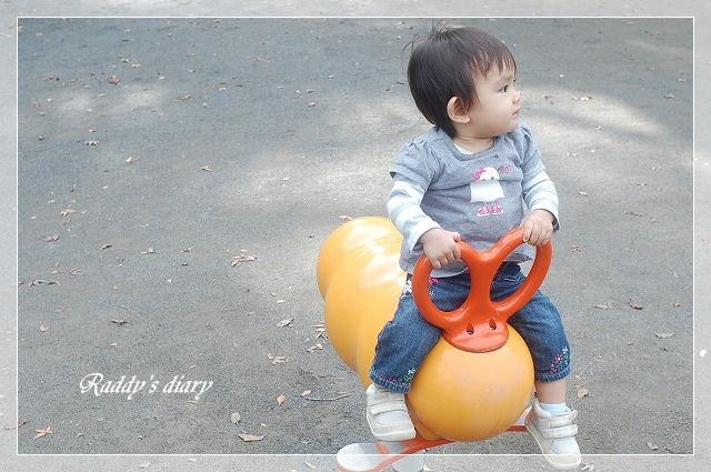 DSC_0069_20111116235415.jpg