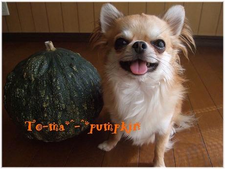2009-10-18-38.jpg