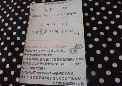 2011-04-29-07.jpg