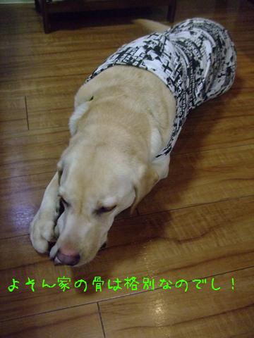 003_20120313132958.jpg