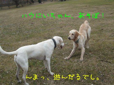 018_20120131200819.jpg