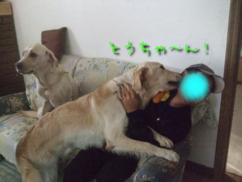 DSCF0004_20111105142614.jpg