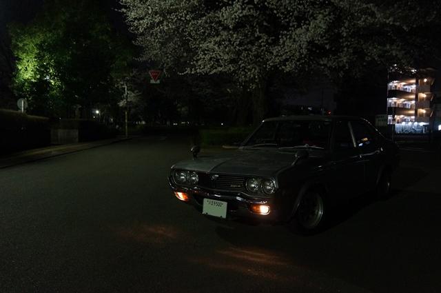 ルーチェと夜桜'12