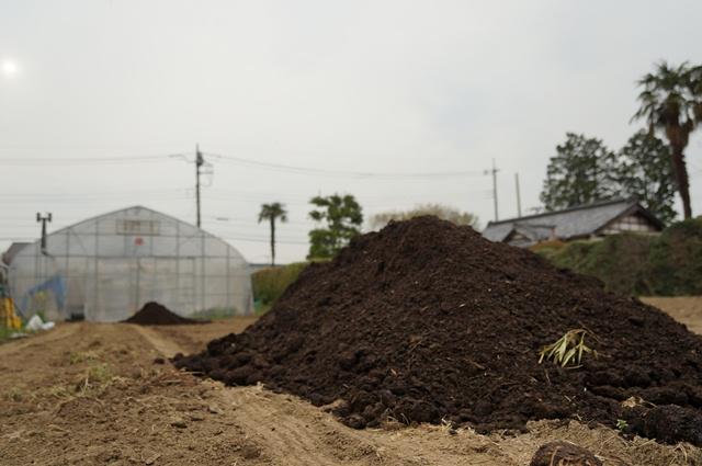我が家の畑に降りた、堆肥