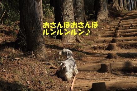 IMG_7843_R.jpg
