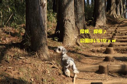 IMG_7844_R.jpg