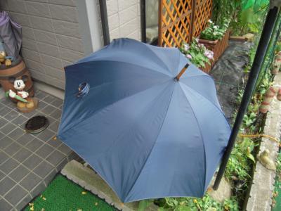 傘干してる?