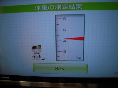モモちゃん4.2キロ