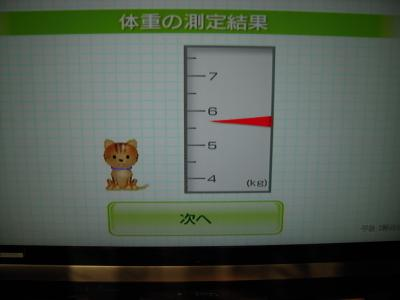 タロウ体重測定