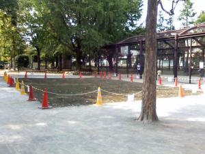 9月28日の中庭