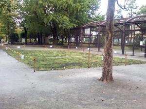 9月30日の中庭