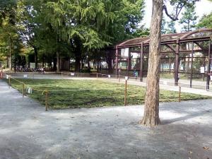 10月1日の中庭