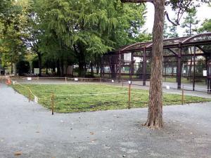 10月3日の中庭