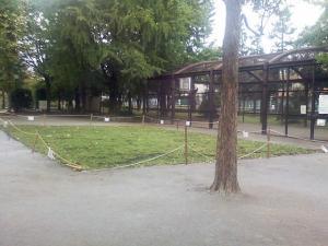 10月5日の中庭