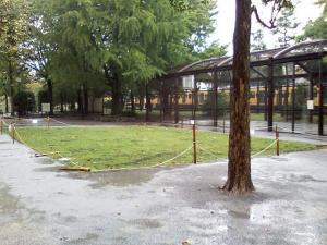 10月6日の中庭