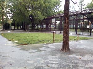 10月7日の中庭
