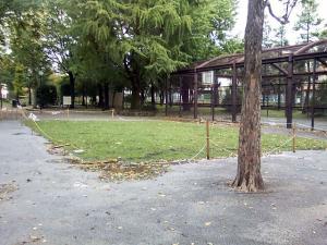 10月8日の中庭