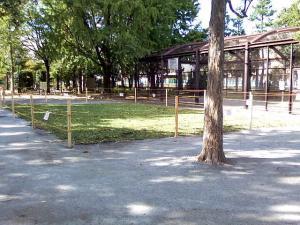 10月9日の中庭