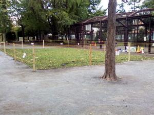 10月10日の中庭
