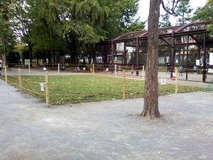 10月12日の中庭