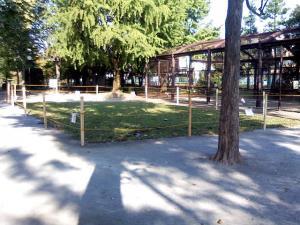 10月13日の中庭