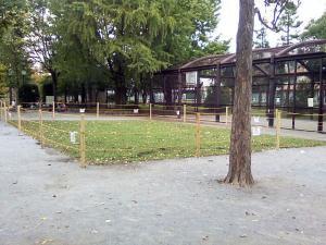 10月17日の中庭