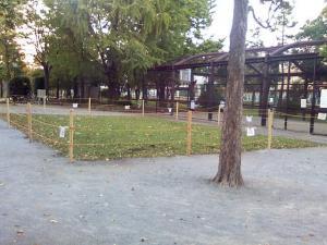 10月19日の中庭