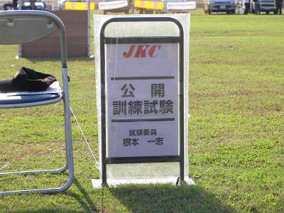SANY0012s400.jpg