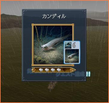 2009-08-26_22-12-26-009.jpg