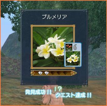 2009-08-29_18-02-37-017.jpg