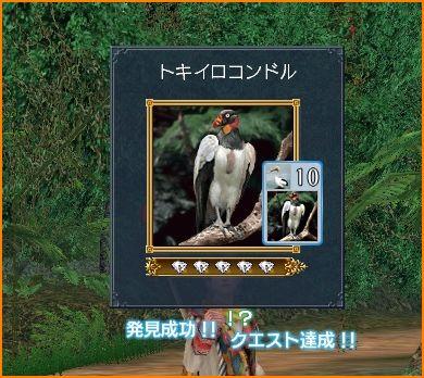 2009-10-04_23-30-20-006.jpg