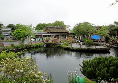 忍野八海-1