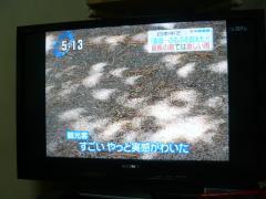 0724nissyoku1.jpg